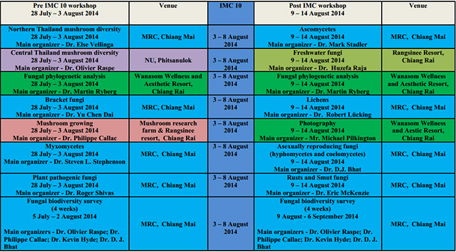 MRC workshops before and after IMC